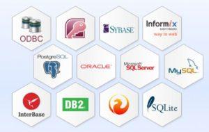 Anbindungen an Datenbanken vorhandener Warenwirtschaftssysteme ist auch direkt möglich.